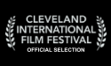 Coming Through The Rye Movie Cleveland Film Festival